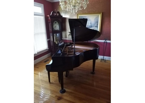 Showroom condition, Petit Grand Piano